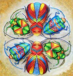 Gökkuşağı böcekleri(m)... Rainbow beetles... 🐞❤️💛💚💙💜💖🐞 #dreams #dreamer #moodoftheday #mood #colorfull #colorfully #coloursoflife #colours #beautiful #coloring #coloring_secrets #arttherapy #coloursoftheday #coloringtherapy #coloringtime #milliemarotta #milliemarottaanimalkingdom #beetle #rainbow #beetles #fabercastell #polychromos #pencilcolour #pencilwork #beautifulcolours #mycreativeescape #creativelycoloring #creative #coloringmasterpiece #beautifulbeetle