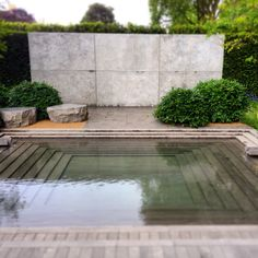 Pool view of Luciano Giubbilei's award-winning Laurent-Perrier garden at the 2014 RHS Chelsea Flower Show.
