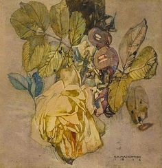 Watercolour painting ▫ Faded Roses by Charles Rennie Mackintosh ▫ 1916