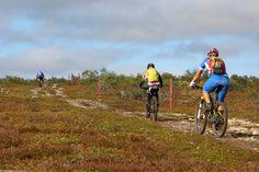 Saariselkä MTB stage1 (092) | Saariselka.com Mtb, Mountain Biking, Bicycle, Bike, Bicycle Kick, Bicycles