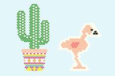 diagramme cactus et flamant rose
