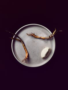 MAAEMO by Tuukka Koski, via Behance