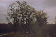 Social Art, Dark Forest, Winter Photography, Environment, Country Roads, Clouds, In This Moment, Explore, Sunset
