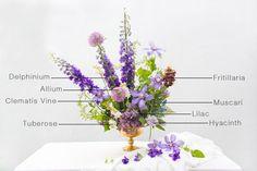 Floral Encyclopedia: A Springtime Arrangement