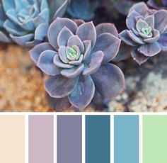 Staring at those white walls hoping for inspiration? Try this on-trend spring color palette & bring your room to life.