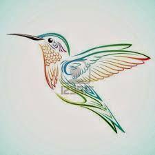 Resultado de imagen de colibri