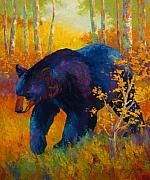 Bear Paintings - In To Spring - Black Bear by Marion Rose