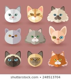 Set Cute Cat Face Different Color Stock Vector (Royalty Free) 1350242702 Animal Line Drawings, Cute Cat Face, Cat Cookies, Cat Icon, Drawing Letters, Simple Cartoon, Cat Party, Animal Faces, Cat Breeds