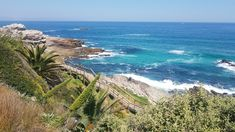 The stunning cliff walk along Hermanus Bay, South Africa Tsitsikamma National Park, Before You Fly, V&a Waterfront, Boulder Beach, Whale Watching Tours, Port Elizabeth, Table Mountain, Game Reserve