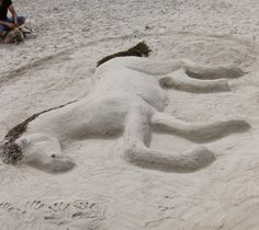 Shark Sand Art Sculpture