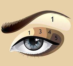 Вертикальная схема нанесения теней: - Вся область верхнего века делится на пять одинаковых частей по вертикали, от внешнего к внутреннему уголку глаза. На первую (внешнюю) часть наносится наиболее насыщенный оттенок. - На вторую зону наносится темный тон. - Третья часть оформляется переходным средним оттенком. - Интенсивность оттенков на следующих зонах уменьшается. - Четвертая часть – наиболее светлый тон. - Последняя, пятая часть (внутренняя область глаза) высветляется корректором или же…