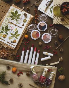 """Shifting into autumn : Pacifica Makeup story. Get the most from the seasonal switch and discover new """"good for you"""" cosmetics in this new beauty post on TLV Birdie Blog."""