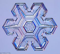 snowflakes | Pictured: The stunning snowflakes that look like diamonds in the sky ...