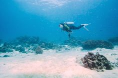 Full-Day Scuba Diving in Tenerife - Tinggly Voucher / Gift Card in a Gift Box * Wow! I love this. Check it out now! : Gift cards