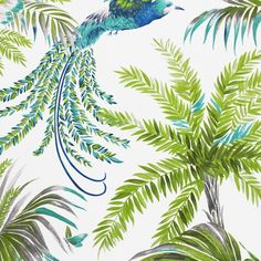 Osborne & Little Bird of Paradise Fabric A pure cotton curtain fabric featuring exotic birds with vibrant plumage swooping between tropical fronds and foliage, printed in turquoise, blue and green on a white ground. Designed by Matthew Williamson. Tropical Curtains, Tropical Fabric, Tropical Home Decor, Green Home Decor, Exotic Birds, Exotic Flowers, Matthew Williamson, Flower Curtain, Curtain Fabric