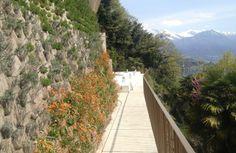 Residenze blu GriwaTreuhand AG - Residenza blu, Ronco sopra #Ascona #verdeverticale #greenroofs  #verticalgreen - realizzazione del verde con sistema Perligarden - www.perligarden.com