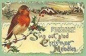 Robin Vintage postcard