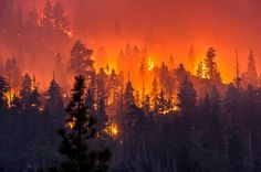 15 surreal images captured by a photographer who chases wildfires Photographer Stuart Palley captures surreal images of California wildfires. Images Of California, Northern California, Fire Photography, Landscape Photography, California Wildfires, Wild Fire, Orange Aesthetic, Northern Lights, Pantanal