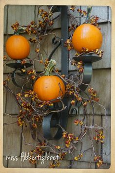 Display mini pumpkins on wall sconces from Miss Flibbertigibbet: Paint, Paint and More Paint....