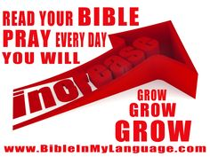 We are committed to bring the Bible and other general study material to you from around the world in your language. What Is Bible, Serving Others, Powerful Images, God First, Study Materials, Word Of God, Pray, Christ, Blessed