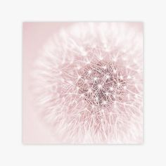 Pink Dandelion Wall Art Print, Girl Wall Art, Pink Bathroom Wall Art by Galeria Rodrigo