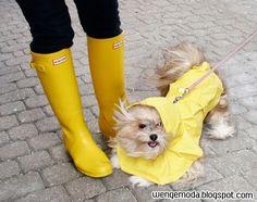 Wenge Moda: Hunter Yağmur Çizmeleri