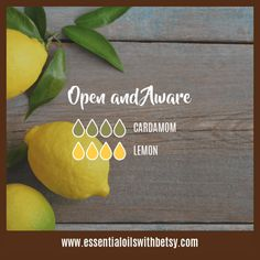 Diffuser Oil Blend Open And Aware: Cardamom, Lemon