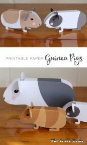 guinea-pigs printable