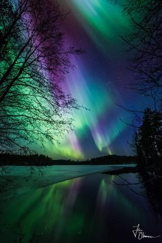 Northern lights all over Finland last night. Scenery Pictures, Landscape Pictures, Nature Pictures, Cool Pictures, Cool Photos, Color Of Night, Northern Lights Norway, Some Enchanted Evening, Northen Lights