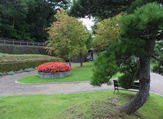 山中湖花の都公園。