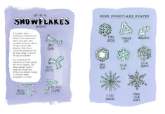 """Rothman drew several shapes a snowflake can take. Excerpted from """"Nature Anatomy"""" by Julia Rothman. Used with permission of Storey Publishing"""