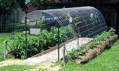 homemade metal garden arch childrens garden - Google Search