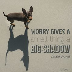 """""""Worry gives a small thing a big shadow."""" –Swedish Proverb"""