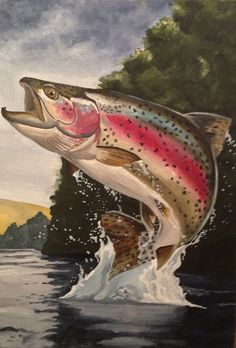 Oil on Canvas - Orig Oil on Canvas - Original Photo Not Taken Trout Fishing, Fly Fishing, Bass Fishing Pictures, Trout Tattoo, Fish Artwork, Fish Drawings, Shadow Art, Rainbow Trout, Fish Print