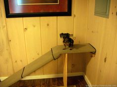 DIY Dog Ramp - my dachshund recently had back surgery, so I needed a dog ramp -- instead of doggie steps -- as a way for her to get up on my bed. Most of the dog ramps I found online where very expensive and the height didn't match up with my bed height. So I made my own. Here's how...