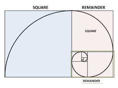 Each Rectangle has a