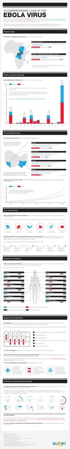 A Comprehensive Look at the EbolaVirus Infographic