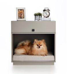 Criado-mudo pet Bob Dog Pet Furniture, Kitchen Furniture, Furniture Design, Black Rooms, Animal Decor, Pet Home, Animal Design, Floating Nightstand, My Dream Home