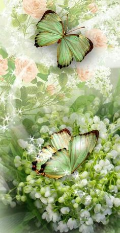 Pill – Wallpaper World Butterfly Artwork, Butterfly Wallpaper Iphone, Flower Background Wallpaper, Butterfly Pictures, Cute Wallpaper Backgrounds, Pretty Wallpapers, Cellphone Wallpaper, Flower Backgrounds, Emoji Wallpaper