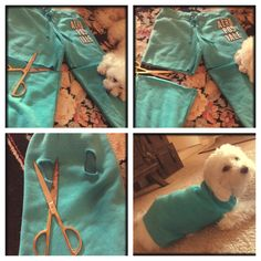 22 DIY Ideas to Create Dog Sweater. Sweat pant legs = sweatshirts for both of the girls! :)