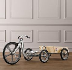 You know, for all the things he will collect while pedaling around. :) $299