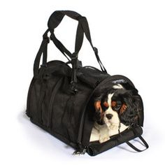 Dog Carrier with Flex Height