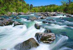 cossatot river, arkansas - Yahoo Search Results