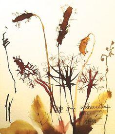 wild flowers by kate osborne