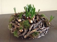 I like this rustic spring decoration, would work well as an Easter center piece…