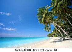 Screensavers for Desktop of Tropical Beaches Best Caribbean Beaches Dream Vacations, Vacation Spots, Vacation Days, Beach Vacations, Vacation Packages, Inexpensive Family Vacations, Moving To Hawaii, The Beach, Beach Art