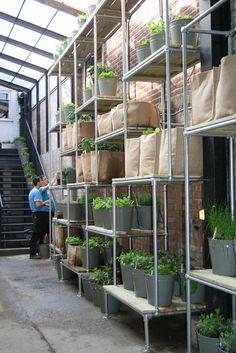 Scaffold Garden. The Future Laboratory. Campaign Design.