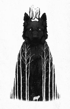 wolf in the forest/forest in the wolf