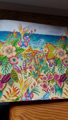 Johanna Basford's Magical Jungle - Plants & Flowers