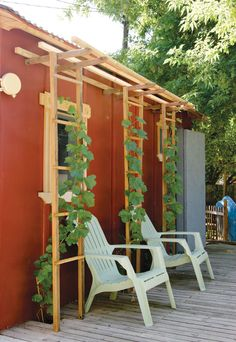Building Projects for Backyard Farmers and Home Gardeners - trellis ideas